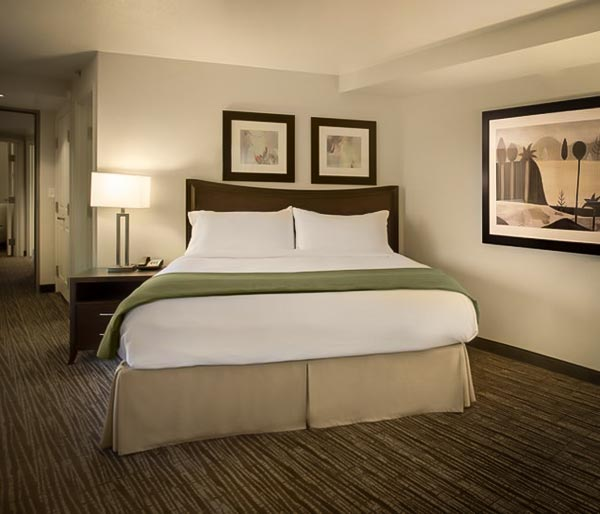 holiday inn suite